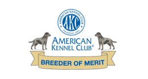 We've been awarded the status of Breeder of Merit by the AKC