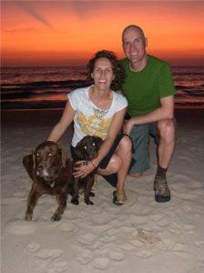 Chocolate Labrador puppy on the beach