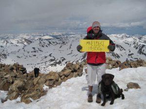 Chocolate Labrador Retriever summits on a 14er in Colorado