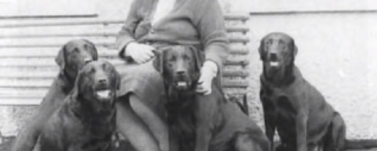 Mary Roslin-Williams a Lab breeder from England who bred show champions and field dogs