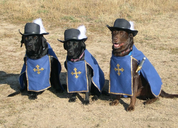 Three Musketeers Halloween costume