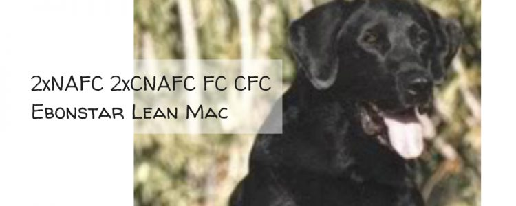 2xNAFC 2xCNAFC FC CFC Ebonstar Lean Mac
