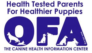 Health tested parents for healthier puppies - Orthopedic Foundation for Animals