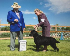 Best of Winners for a 4-point major under Dr Clyde Shaw