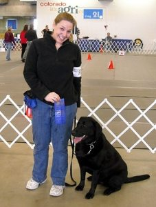 Black Labrador Retriever wins 2 blue ribbons in Rally competition