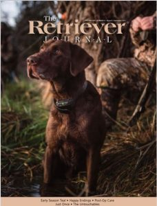 Featured on the cover of the Retriever Journal magazine is Bayou Magic's Rouxster Bleu MH QA2, a chocolate Labrador Retriever