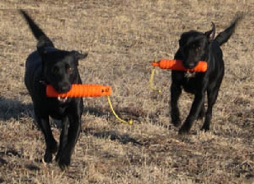 Although they work well together, this is not what a double retrieve means.