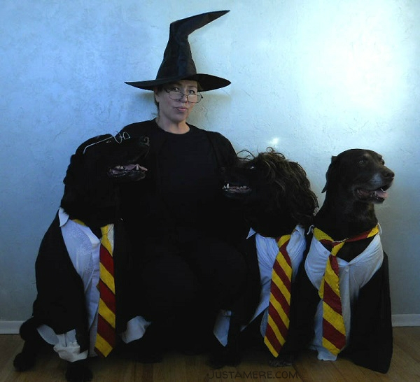Labs dressed as Harry Potter and friends pose with Professor McGonagall